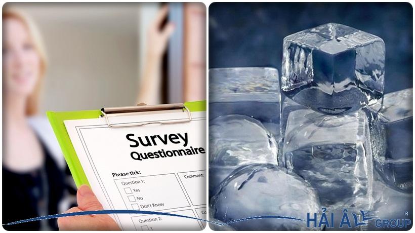 khảo sát thị trường kinh doanh đá sạch